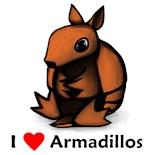 I Love Armadillos