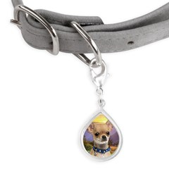 Chihuahua Meadow Small Teardrop Pet Tag