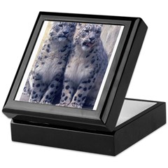 Twin Snow Leopard Cubs Keepsake Box