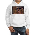 Cicero: God Nature Hooded Sweatshirt